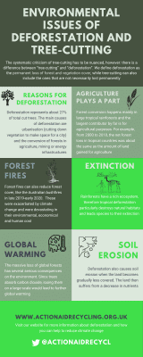 Environmental issues of deforestation and tree-cutting Infographic