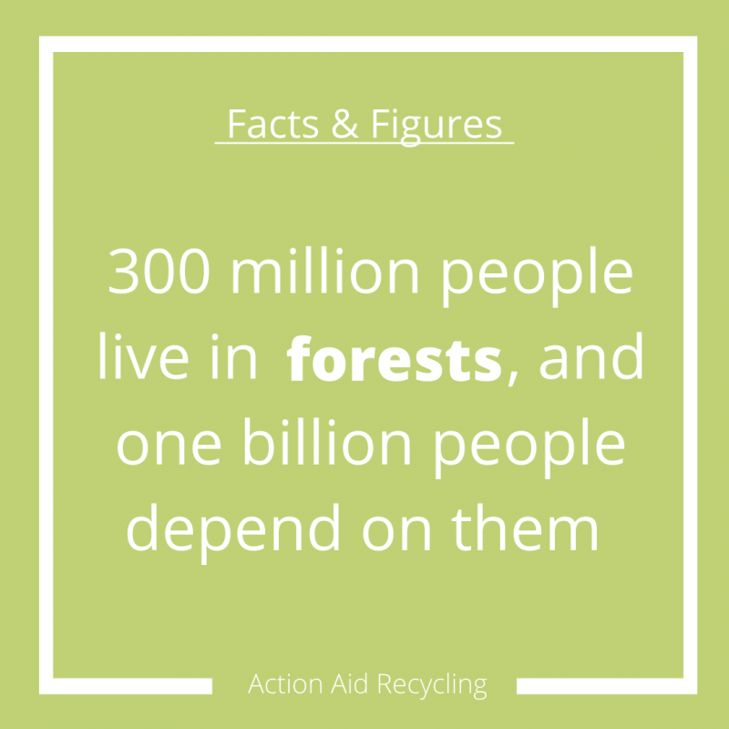 Solutions for Deforestation facts and figures infographic